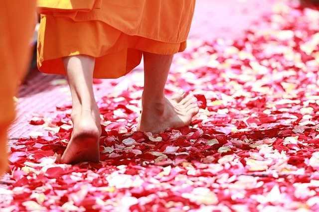 Путь Буддизма