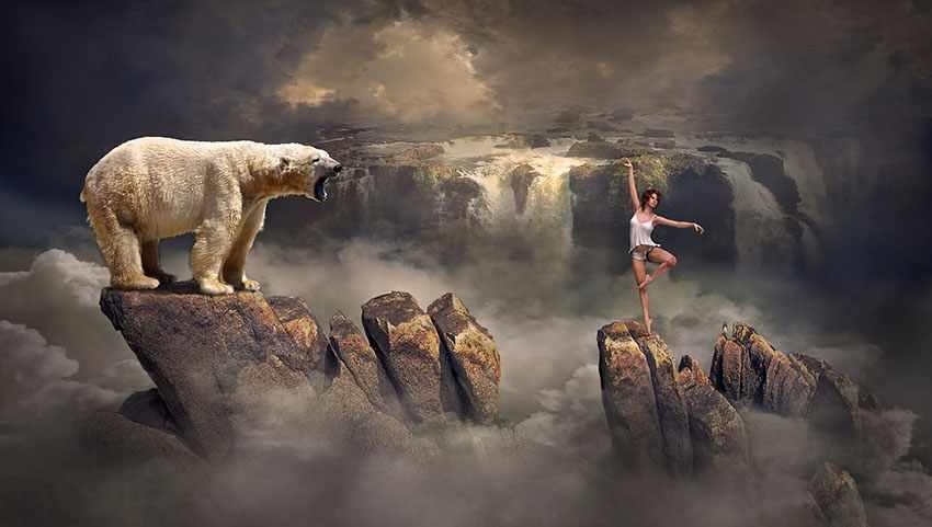 приснился медведь, дневник сновидений