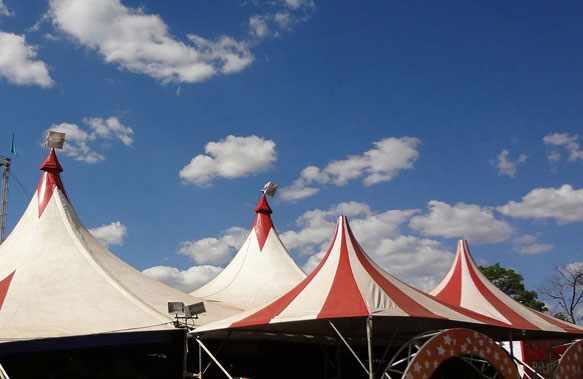 Цирк во сне