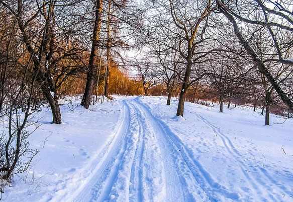 снится снег во сне