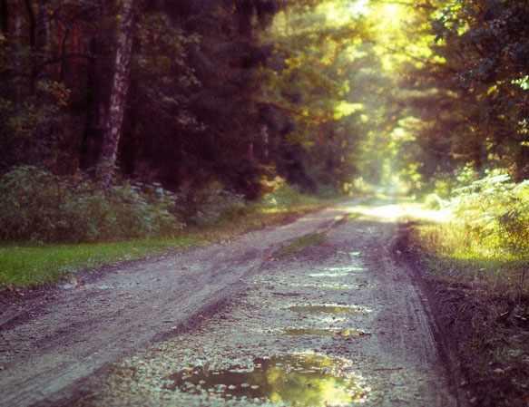 к чему снится грязь на дороге
