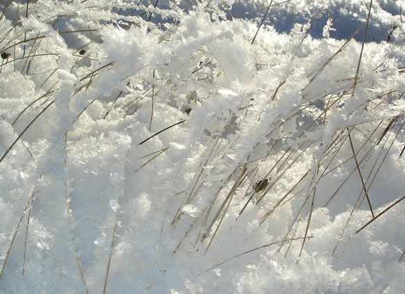снится снег летом во сне