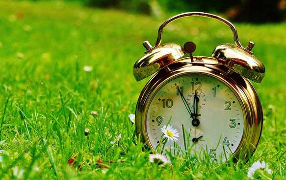 Как выбрать будильник для утреннего пробуждения