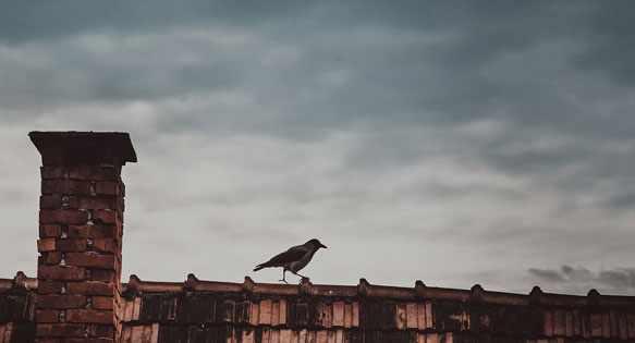 снится крыша