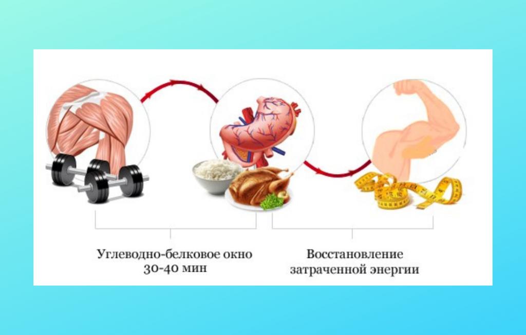Схема: тренировка - ужин - восстановление энергии.