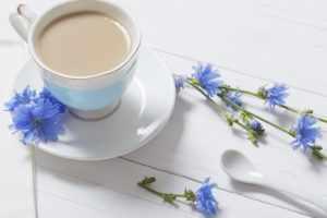Чашка цикория с молоком