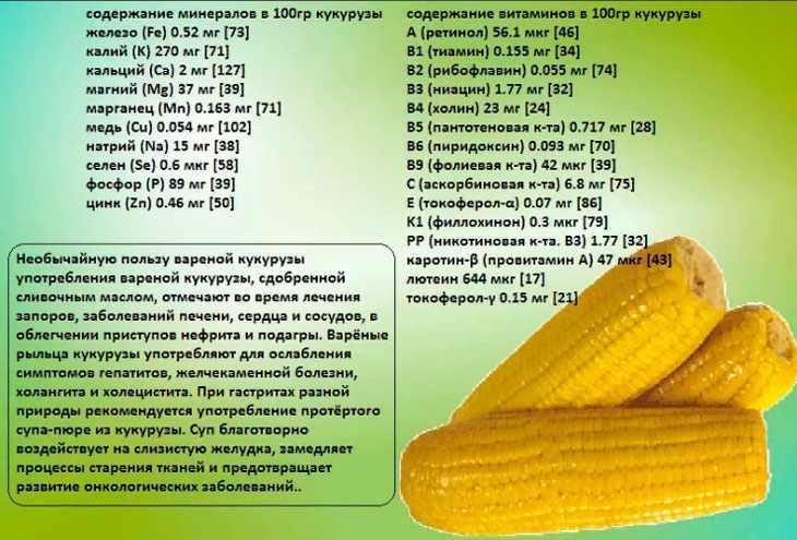 Состав и полезные свойства кукурузы